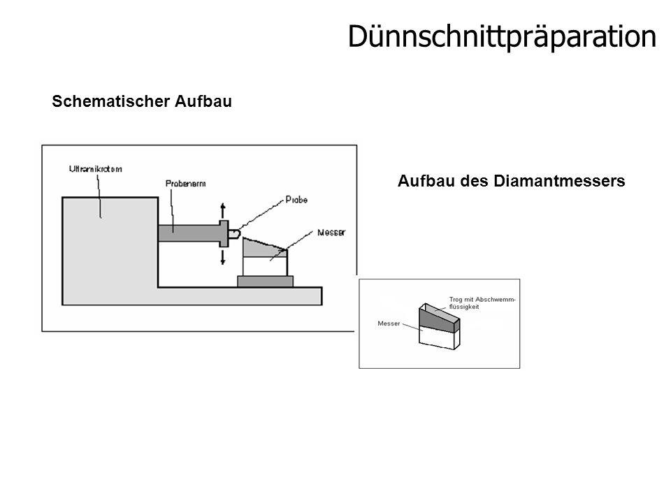 Dünnschnittpräparation Schematischer Aufbau Aufbau des Diamantmessers