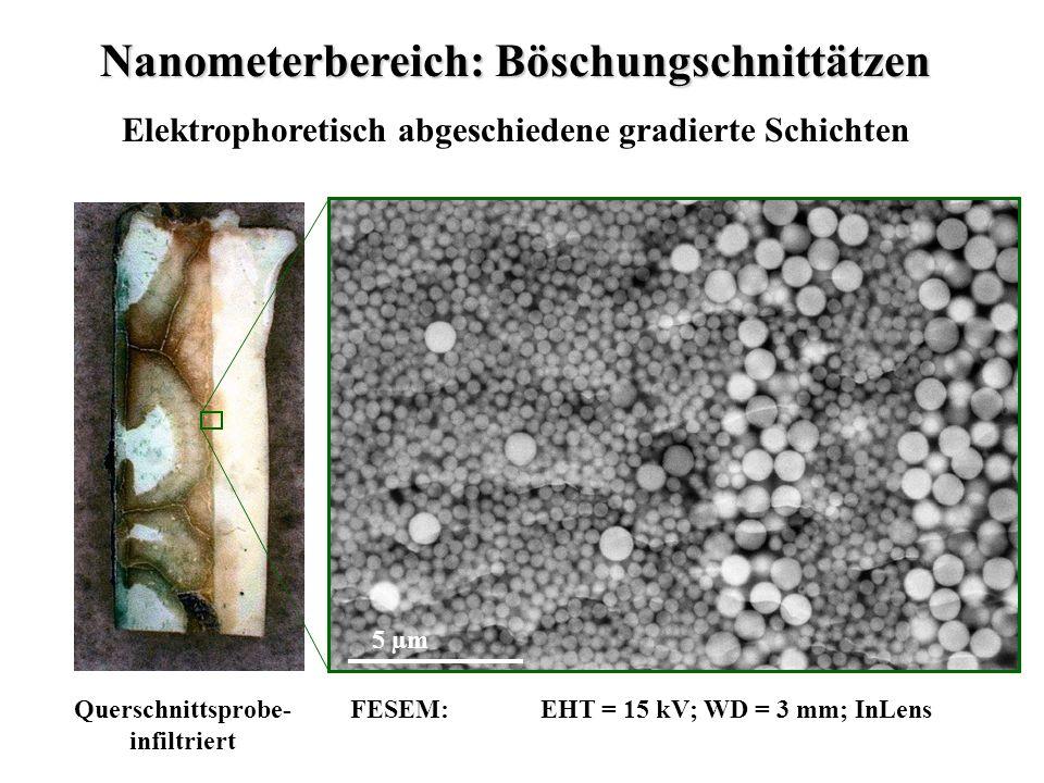 Nanometerbereich: Böschungschnittätzen Elektrophoretisch abgeschiedene gradierte Schichten Querschnittsprobe- infiltriert FESEM: EHT = 15 kV; WD = 3 mm; InLens 5 µm