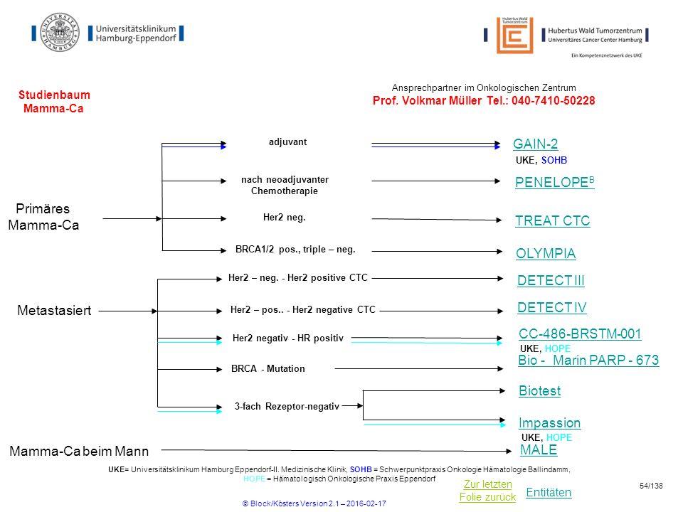 Entitäten Zur letzten Folie zurück Studienbaum Mamma-Ca nach neoadjuvanter Chemotherapie Her2 – neg.