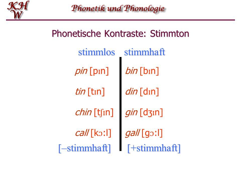 Phonetische Kontraste Der Vergleich der beiden englischen Wörter pit und bit zeigt, dass der Unterschied in der lautlichen Substanz des jeweiligen Anlautes liegt.