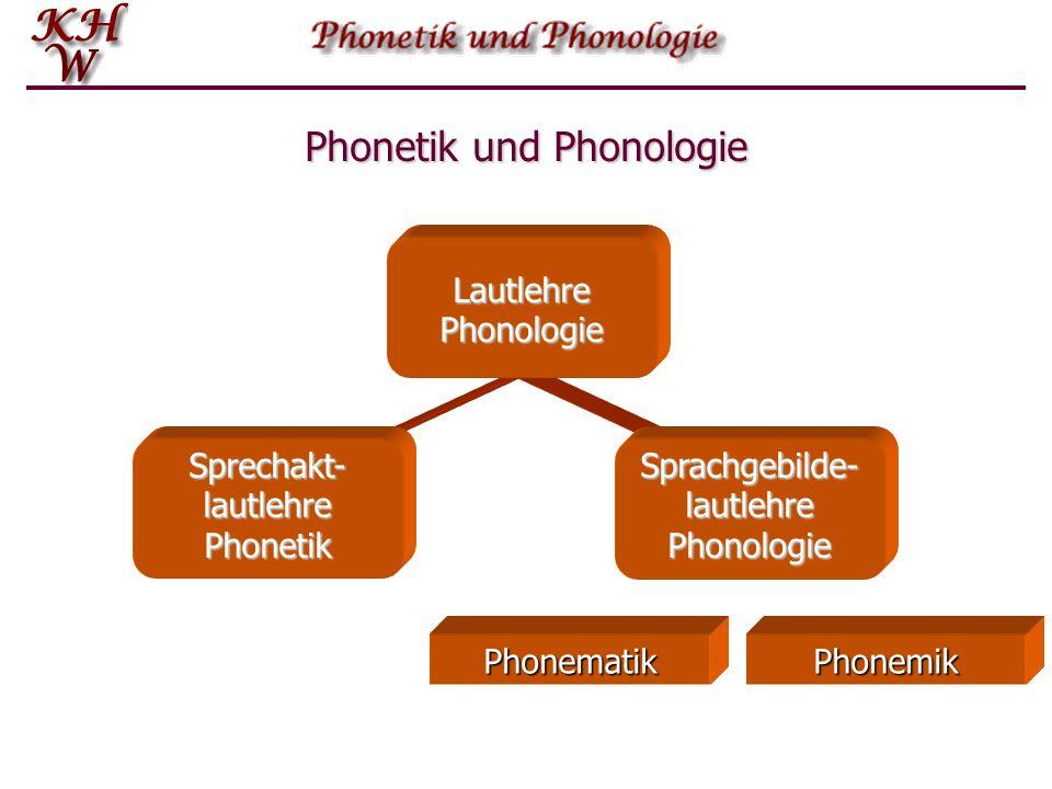 Einführung in die Phonetik und Phonologie  Grundbegriffe