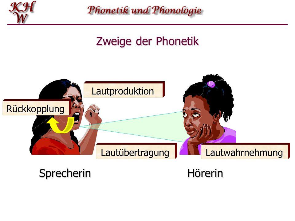 Nicht-distinktive Eigenschaften In der Lautstruktur der englischen Sprache hat die Aspiration keinen funktionalen Status.