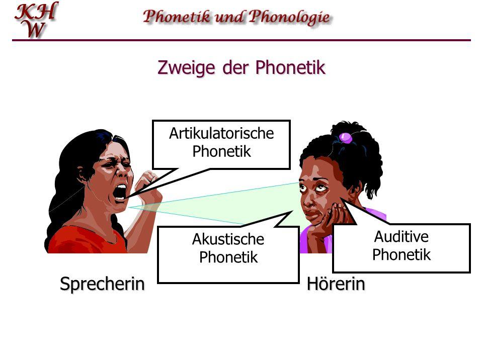 Zweige der Phonetik Sprecherin Hörerin Lautübertragung Lautproduktion Lautwahrnehmung Rückkopplung