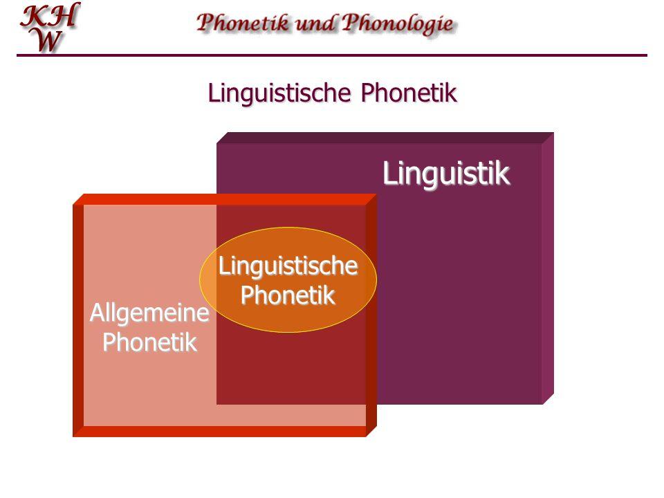 Phonetik und Phonologie Im weitesten Sinne befasst sich die Phonetik mit allen Schallereignissen, die durch die menschlichen Sprechorgane erzeugt werd