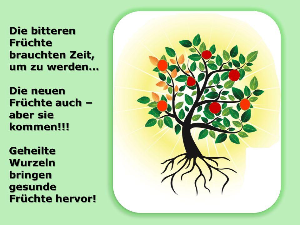 Die bitteren Früchte brauchten Zeit, um zu werden… Die neuen Früchte auch – aber sie kommen!!! Geheilte Wurzeln bringen gesunde Früchte hervor!