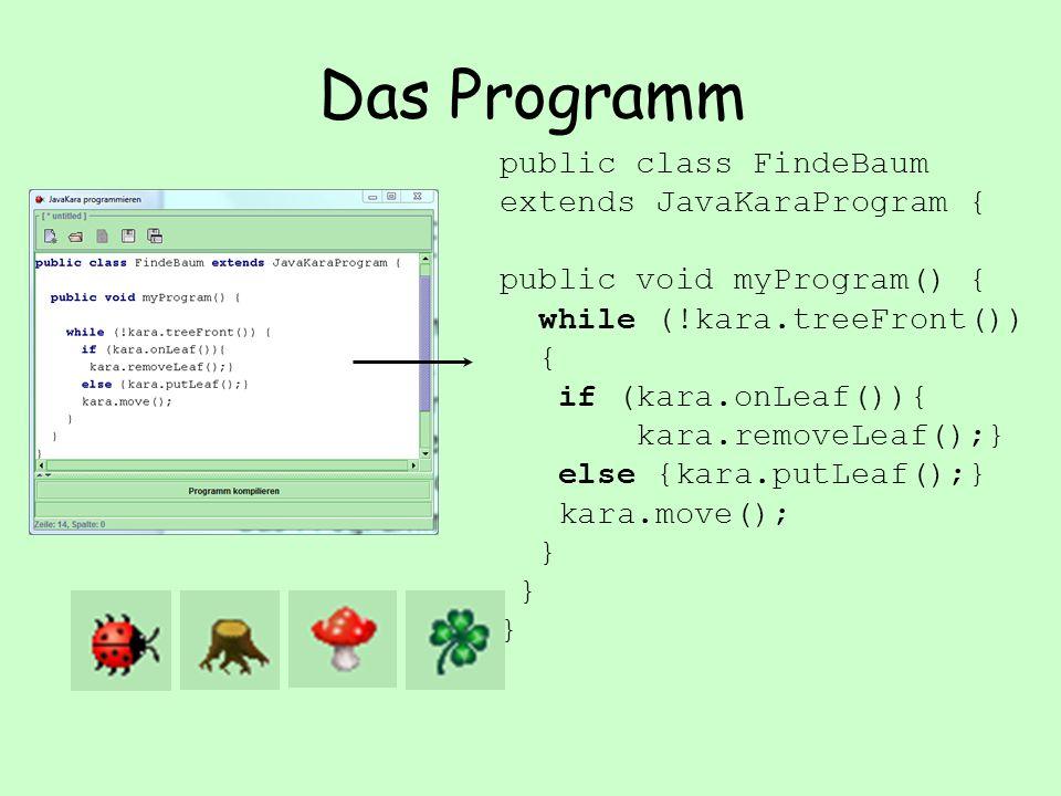 Das Programm public class FindeBaum extends JavaKaraProgram { public void myProgram() { while (!kara.treeFront()) { if (kara.onLeaf()){ kara.removeLeaf();} else {kara.putLeaf();} kara.move(); }