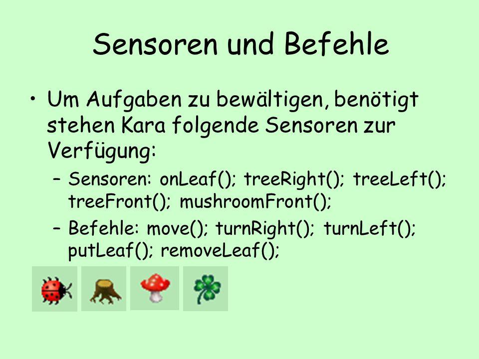 Sensoren und Befehle Um Aufgaben zu bewältigen, benötigt stehen Kara folgende Sensoren zur Verfügung: –Sensoren: onLeaf(); treeRight(); treeLeft(); treeFront(); mushroomFront(); –Befehle: move(); turnRight(); turnLeft(); putLeaf(); removeLeaf();