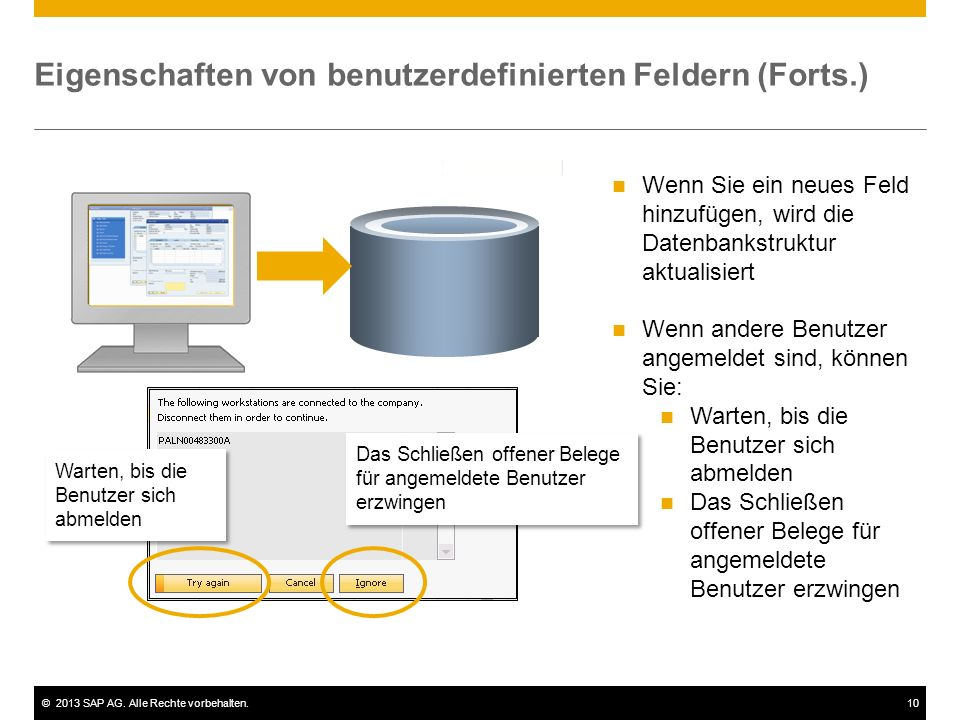 ©2013 SAP AG. Alle Rechte vorbehalten.10 Eigenschaften von benutzerdefinierten Feldern (Forts.) Objekt (z.B. Kundenauftrag) Wenn Sie ein neues Feld hi