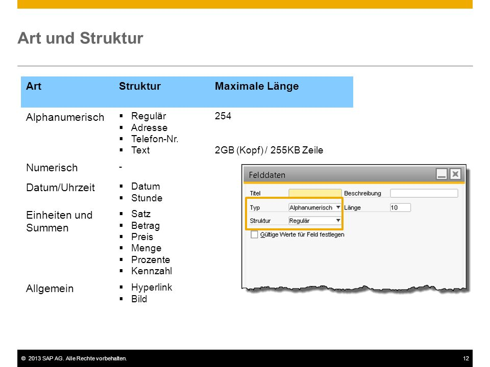 ©2013 SAP AG. Alle Rechte vorbehalten.12 ArtStrukturMaximale Länge Alphanumerisch  Regulär  Adresse  Telefon-Nr.  Text 254 2GB (Kopf) / 255KB Zeil