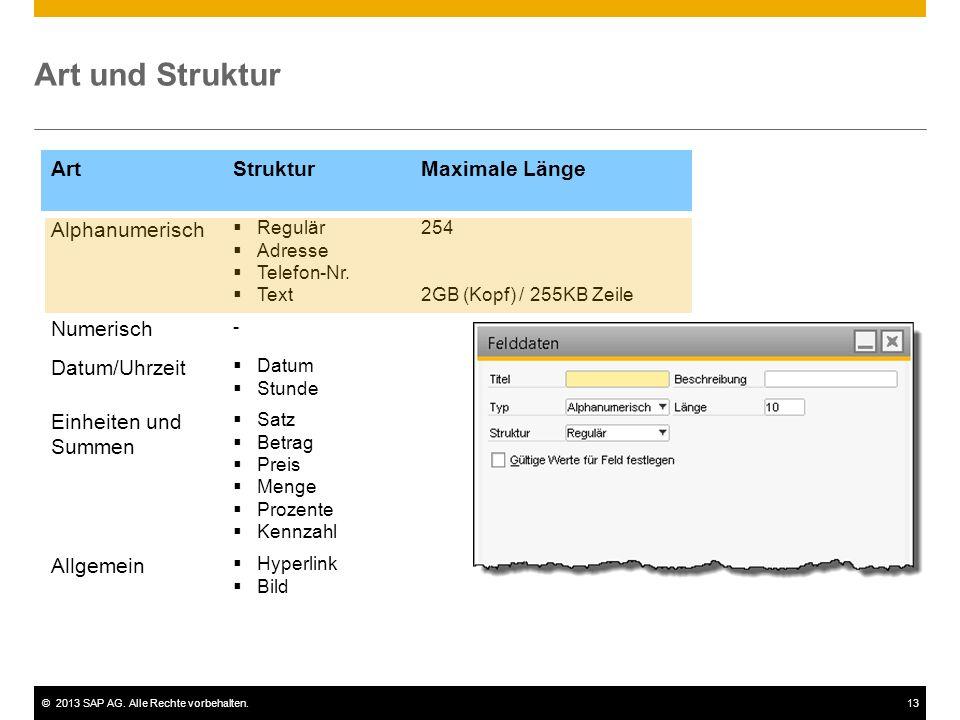 ©2013 SAP AG. Alle Rechte vorbehalten.13 Art und Struktur ArtStrukturMaximale Länge Alphanumerisch  Regulär  Adresse  Telefon-Nr.  Text 254 2GB (K