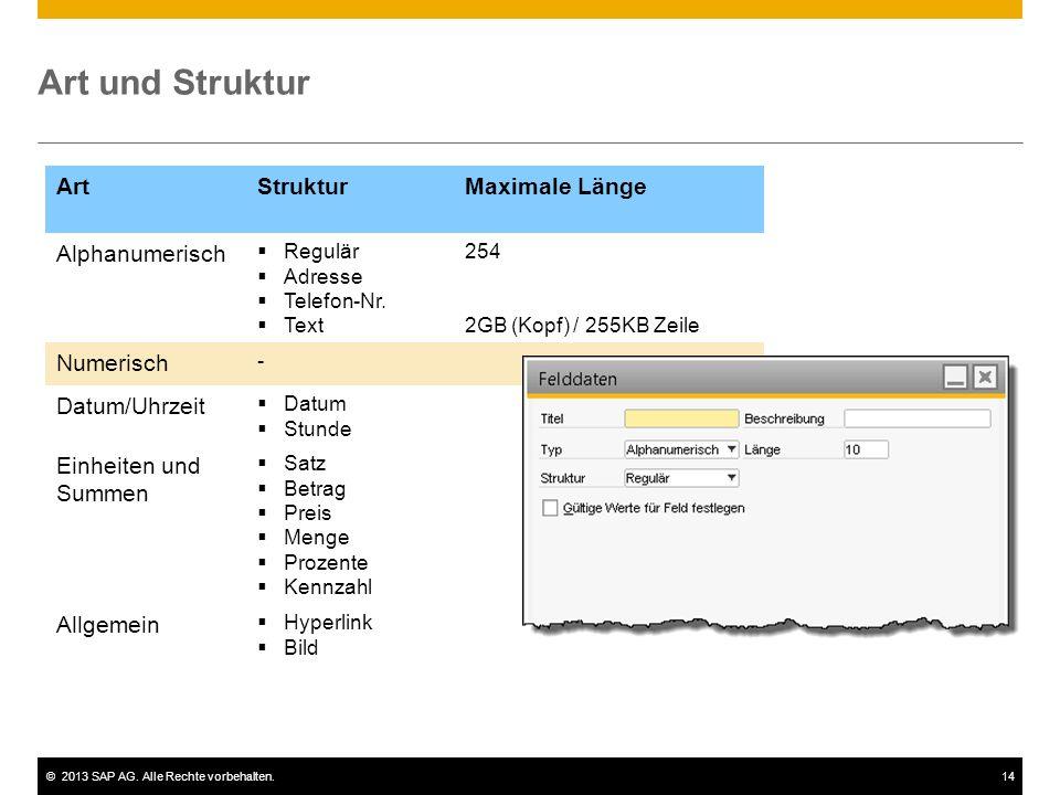 ©2013 SAP AG. Alle Rechte vorbehalten.14 Art und Struktur ArtStrukturMaximale Länge Alphanumerisch  Regulär  Adresse  Telefon-Nr.  Text 254 2GB (K