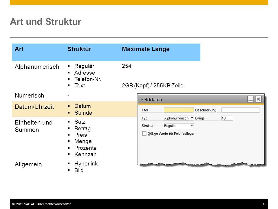 ©2013 SAP AG. Alle Rechte vorbehalten.15 ArtStrukturMaximale Länge Alphanumerisch  Regulär  Adresse  Telefon-Nr.  Text 254 2GB (Kopf) / 255KB Zeil