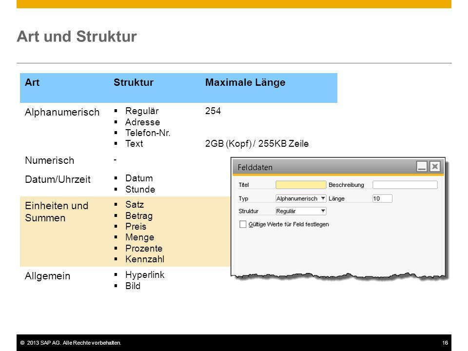 ©2013 SAP AG. Alle Rechte vorbehalten.16 ArtStrukturMaximale Länge Alphanumerisch  Regulär  Adresse  Telefon-Nr.  Text 254 2GB (Kopf) / 255KB Zeil