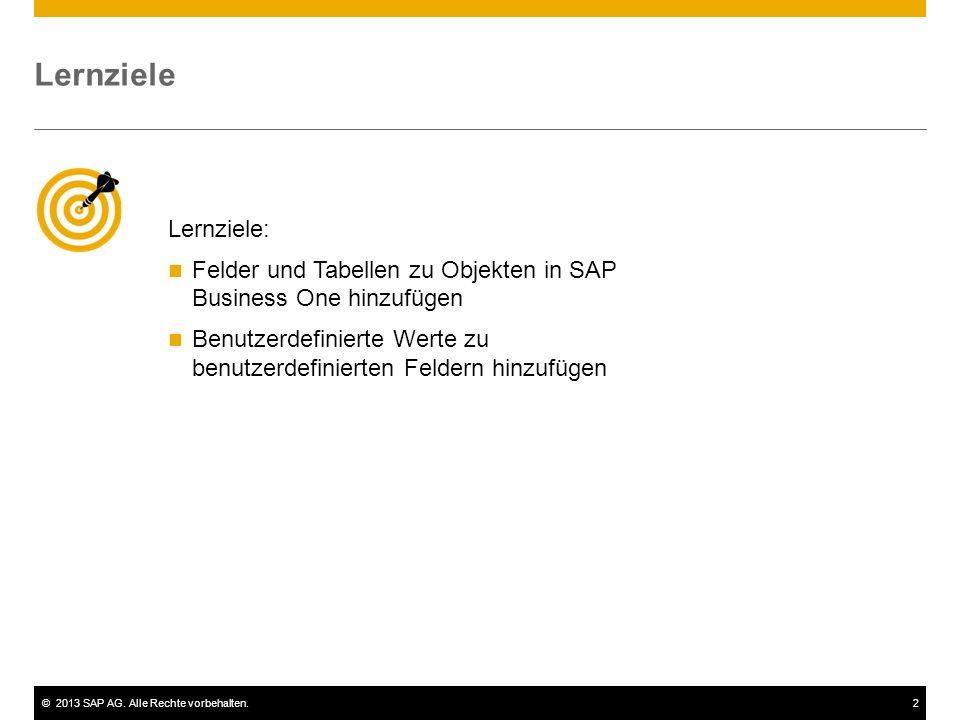 ©2013 SAP AG. Alle Rechte vorbehalten.2 Lernziele Lernziele: Felder und Tabellen zu Objekten in SAP Business One hinzufügen Benutzerdefinierte Werte z