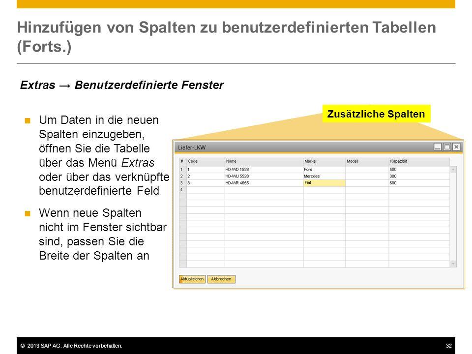 ©2013 SAP AG. Alle Rechte vorbehalten.32 Hinzufügen von Spalten zu benutzerdefinierten Tabellen (Forts.) Um Daten in die neuen Spalten einzugeben, öff
