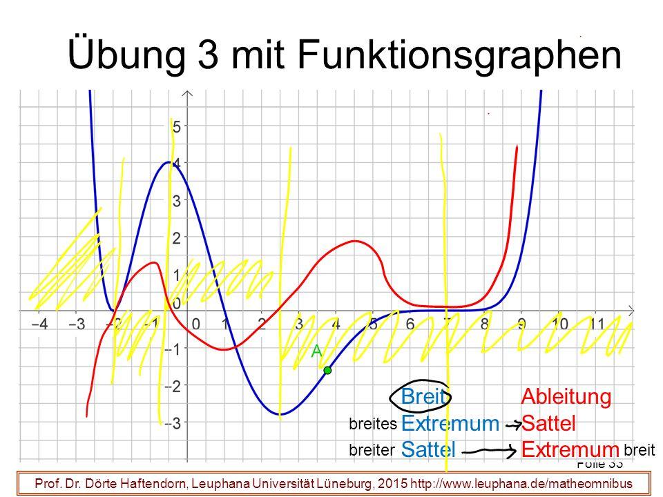 Prof. Dr. Dörte Haftendorn, Leuphana Universität Lüneburg, 2015 http://www.leuphana.de/matheomnibus Übung 3 mit Funktionsgraphen Folie 33 Ableitung Sa