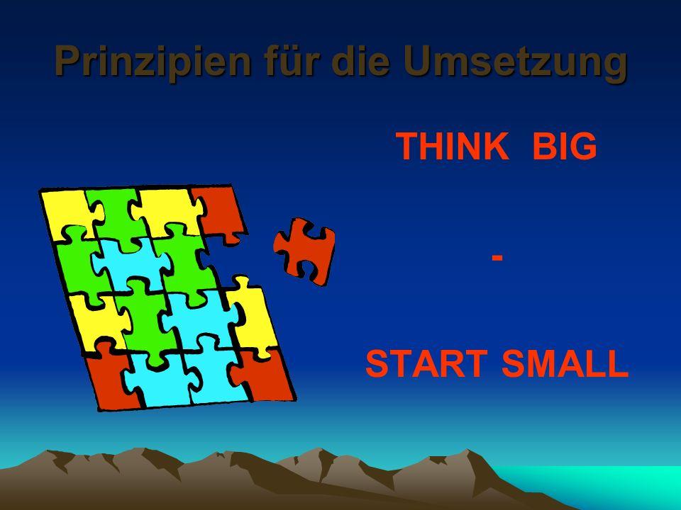 Prinzipien für die Umsetzung THINK BIG - START SMALL