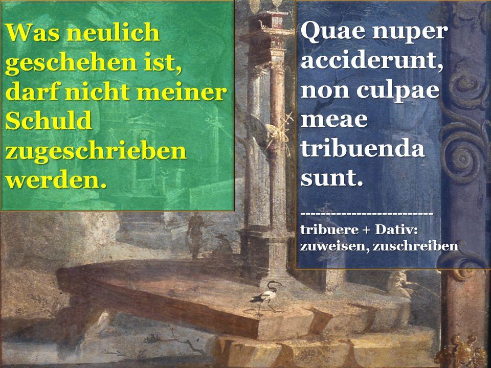 Quae nuper acciderunt, non culpae meae tribuenda sunt.