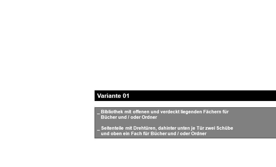 Variante 01 _ Bibliothek mit offenen und verdeckt liegenden Fächern für Bücher und / oder Ordner _ Seitenteile mit Drehtüren, dahinter unten je Tür zwei Schübe und oben ein Fach für Bücher und / oder Ordner