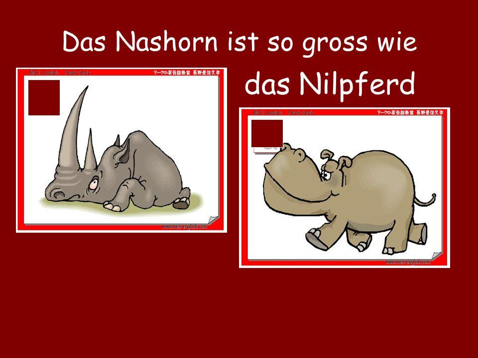 Das Nashorn ist so gross wie das Nilpferd