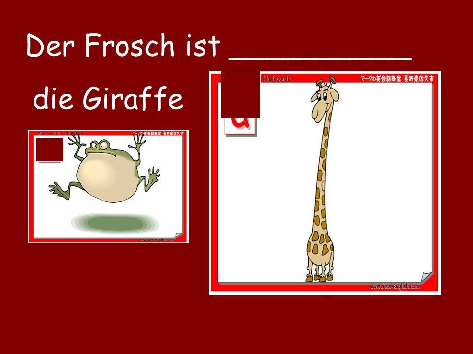 Der Frosch ist __________ die Giraffe