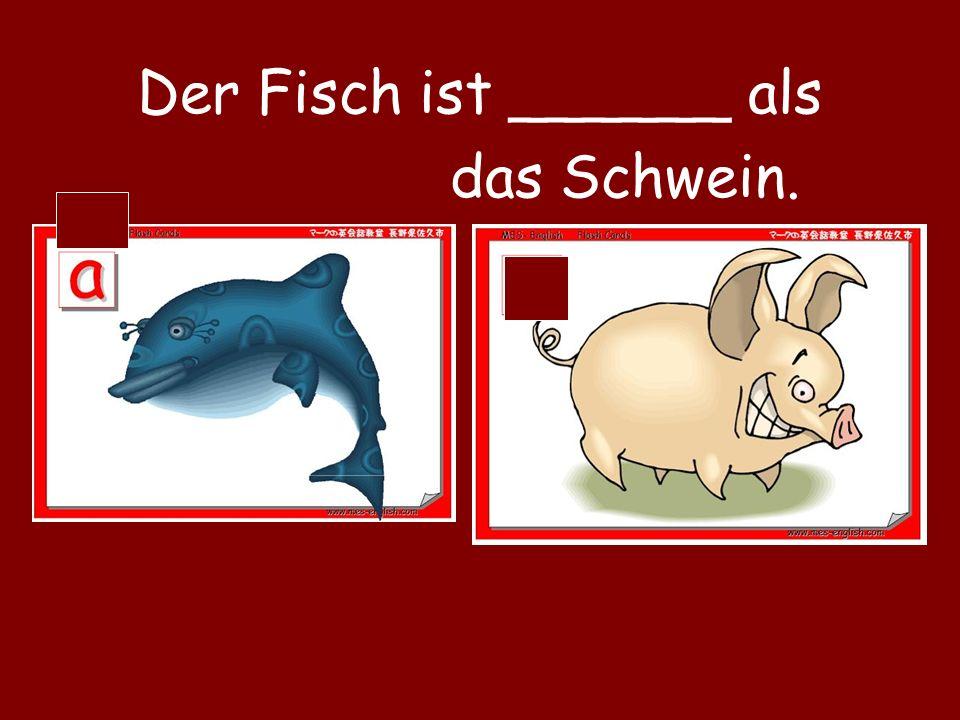 Der Fisch ist ______ als das Schwein.