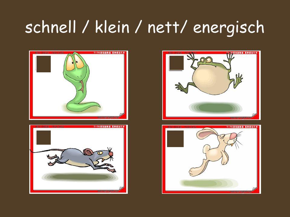 schnell / klein / nett/ energisch