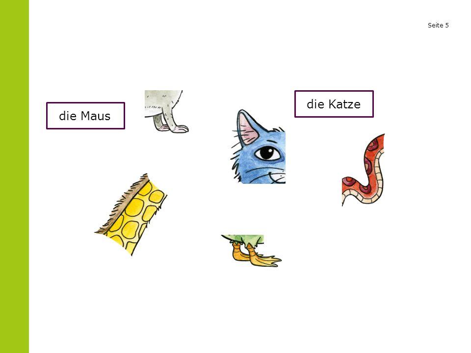 Seite 5 die Maus die Katze