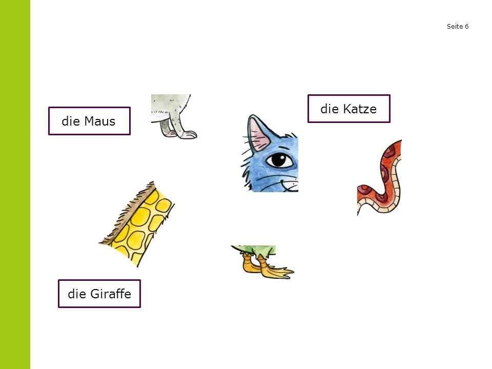 Seite 6 die Maus die Giraffe die Katze