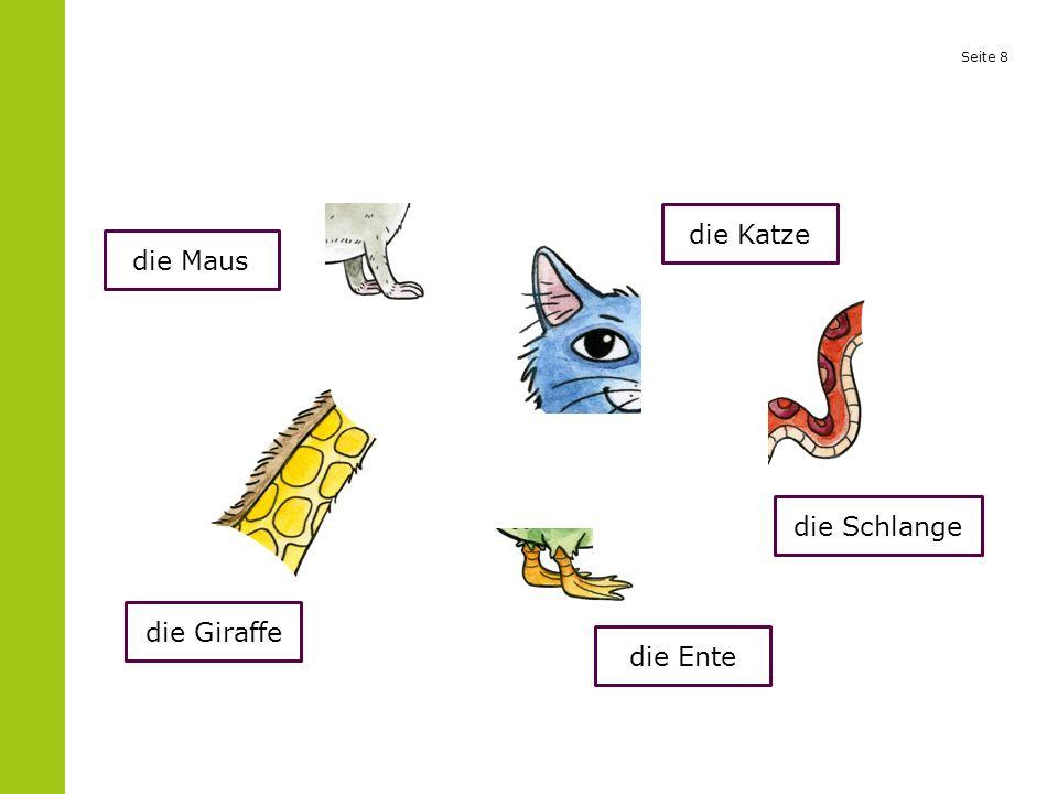Seite 8 die Maus die Giraffe die Katze die Schlange die Ente