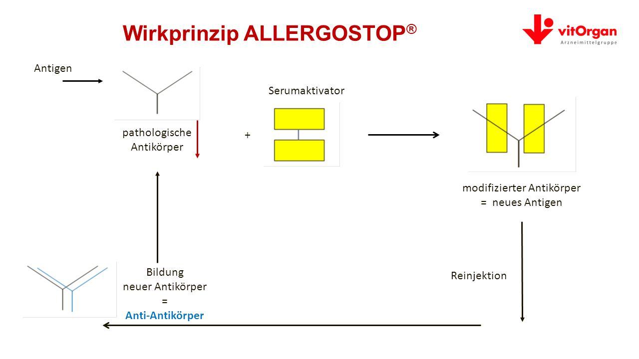 Wirkprinzip ALLERGOSTOP ® pathologische Antikörper Serumaktivator Reinjektion modifizierter Antikörper = neues Antigen + Antigen Bildung neuer Antikörper = Anti-Antikörper