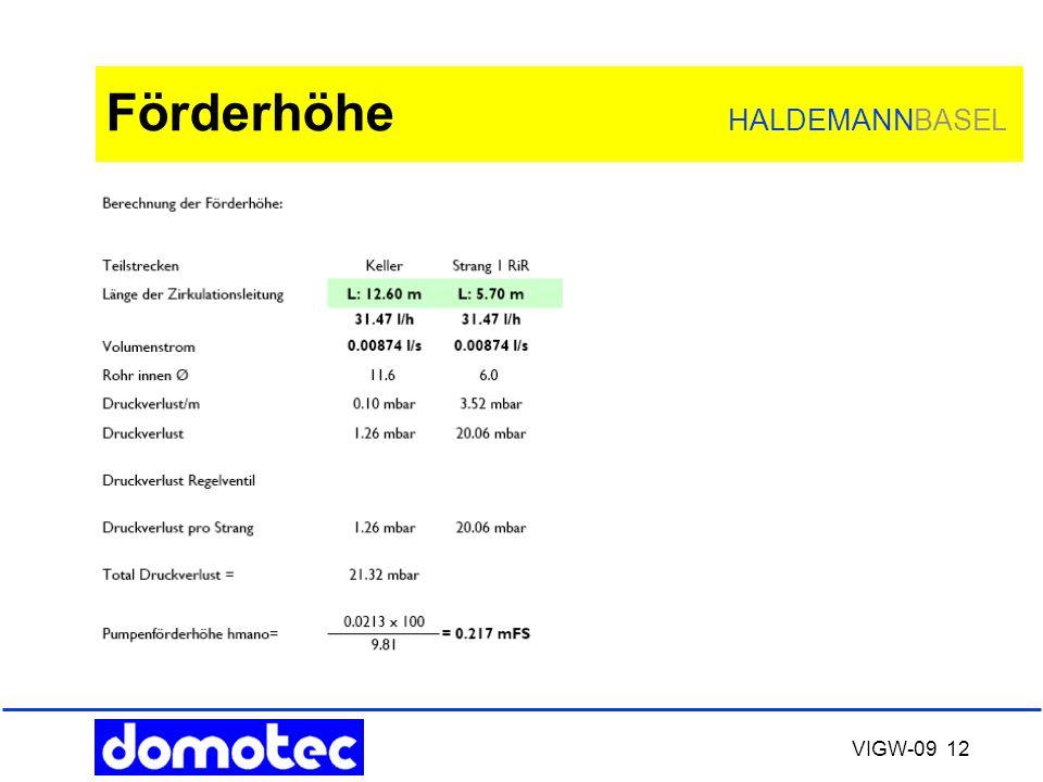 VIGW-09 12 Förderhöhe HALDEMANNBASEL