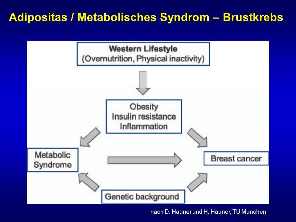 Adipositas / Metabolisches Syndrom – Brustkrebs nach D. Hauner und H. Hauner, TU München