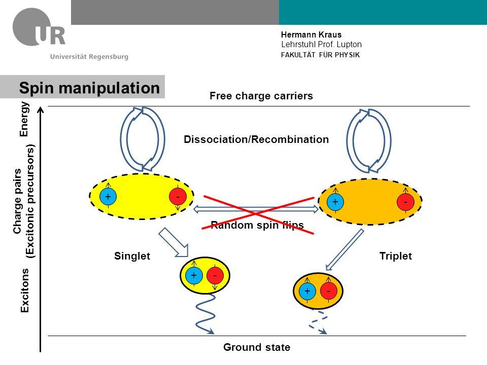 Hermann Kraus Lehrstuhl Prof. Lupton FAKULTÄT FÜR PHYSIK Spin resonance Zeeman effect Photons