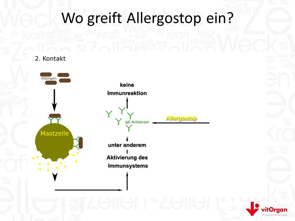 Wo greift Allergostop ein?