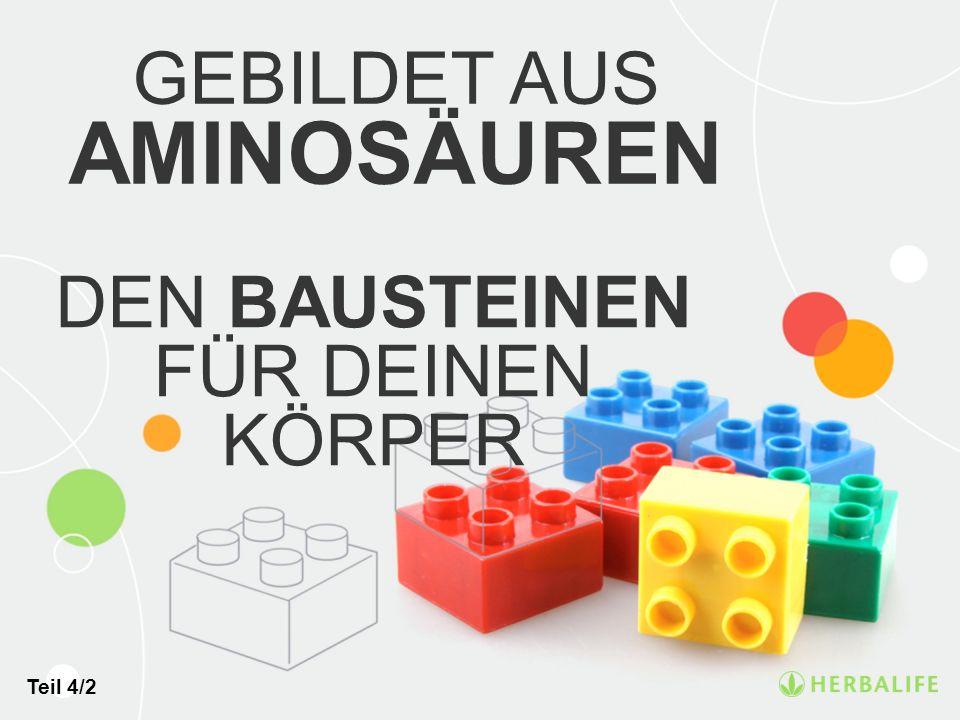 DEN BAUSTEINEN FÜR DEINEN KÖRPER GEBILDET AUS AMINOSÄUREN Teil 4/2