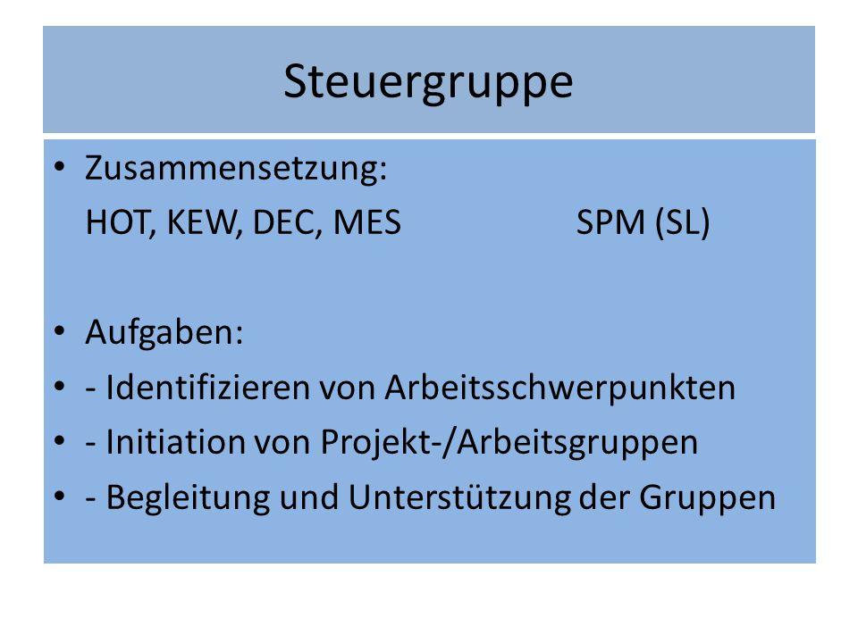 Steuergruppe Zusammensetzung: HOT, KEW, DEC, MES SPM (SL) Aufgaben: - Identifizieren von Arbeitsschwerpunkten - Initiation von Projekt-/Arbeitsgruppen - Begleitung und Unterstützung der Gruppen
