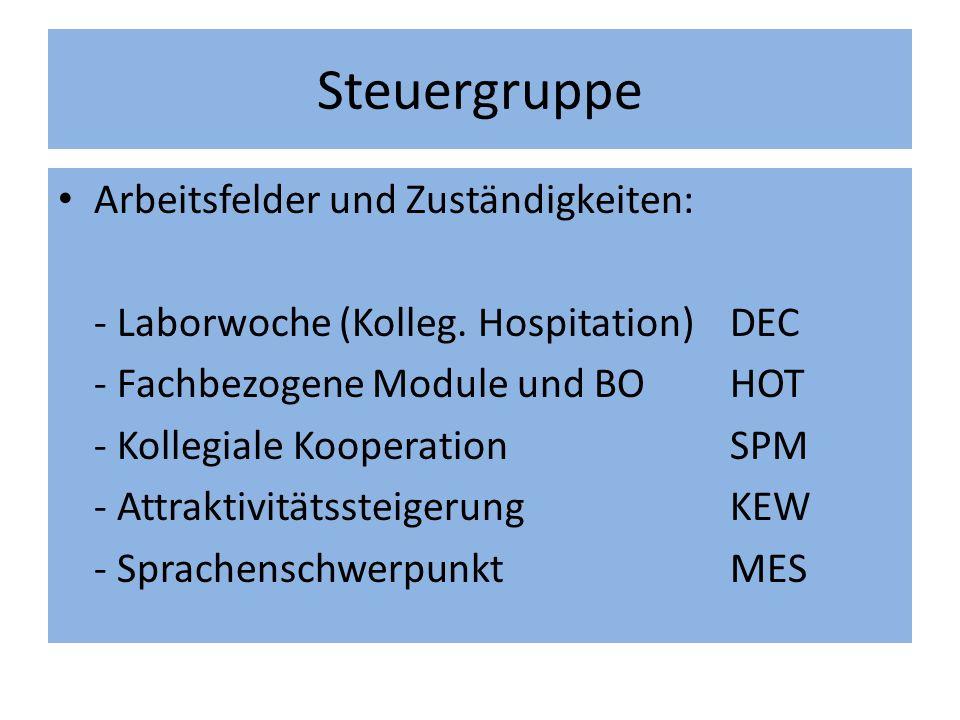 Steuergruppe Arbeitsfelder und Zuständigkeiten: - Laborwoche (Kolleg.