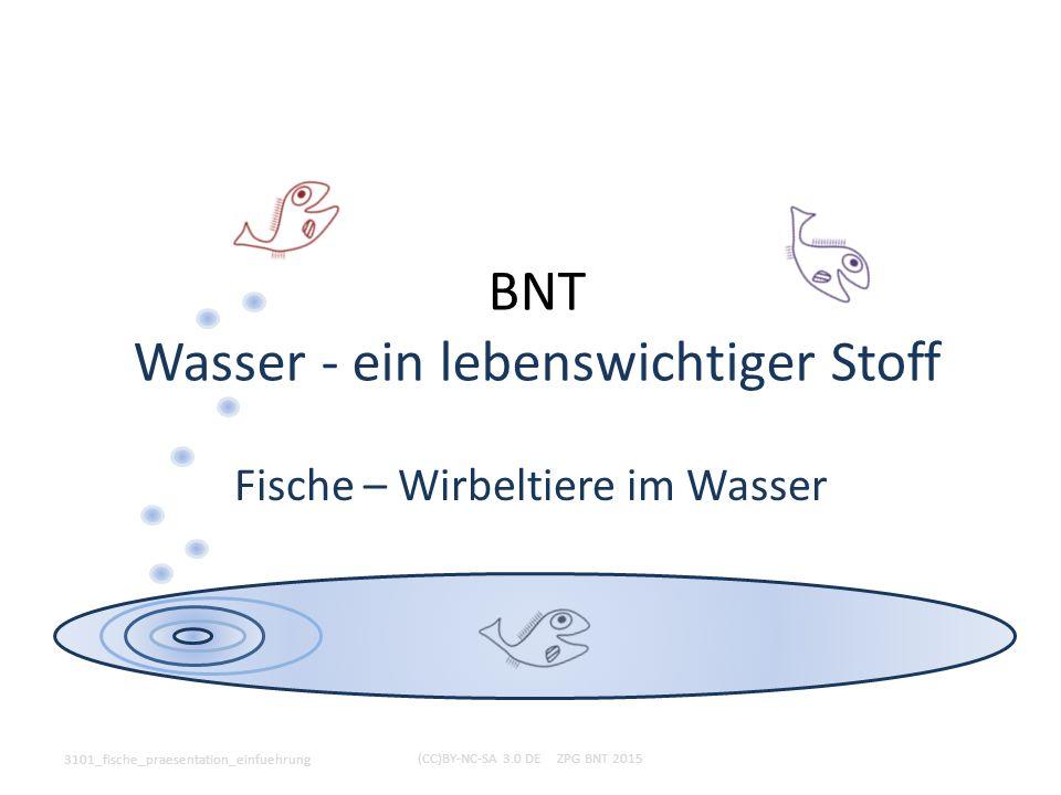 BNT Wasser - ein lebenswichtiger Stoff Fische – Wirbeltiere im Wasser 3101_fische_praesentation_einfuehrung (CC)BY-NC-SA 3.0 DE ZPG BNT 2015