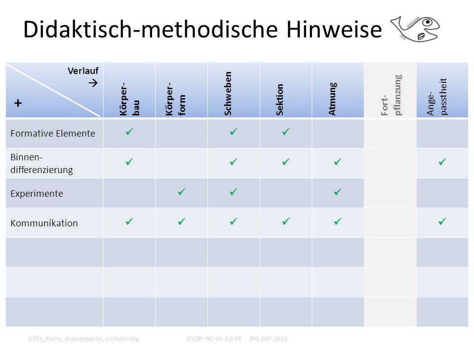 Didaktisch-methodische Hinweise 3101_fische_praesentation_einfuehrung(CC)BY-NC-SA 3.0 DE ZPG BNT 2015 Verlauf  Körper- bau Körper- form Schweben Sekt