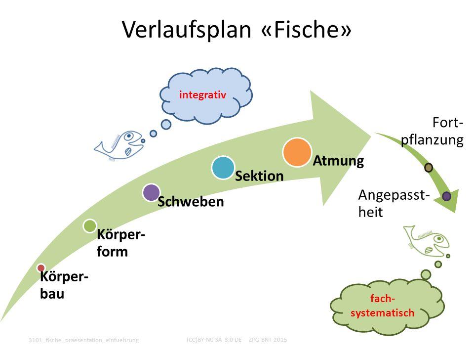 Körper- bau Körper- form Schweben Sektion Atmung 3101_fische_praesentation_einfuehrung (CC)BY-NC-SA 3.0 DE ZPG BNT 2015 Verlaufsplan «Fische» integrat