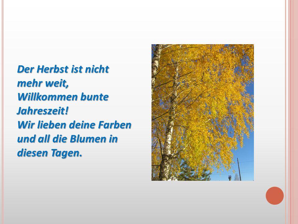 Der Herbst ist nicht mehr weit, Willkommen bunte Jahreszeit! Wir lieben deine Farben und all die Blumen in diesen Tagen.