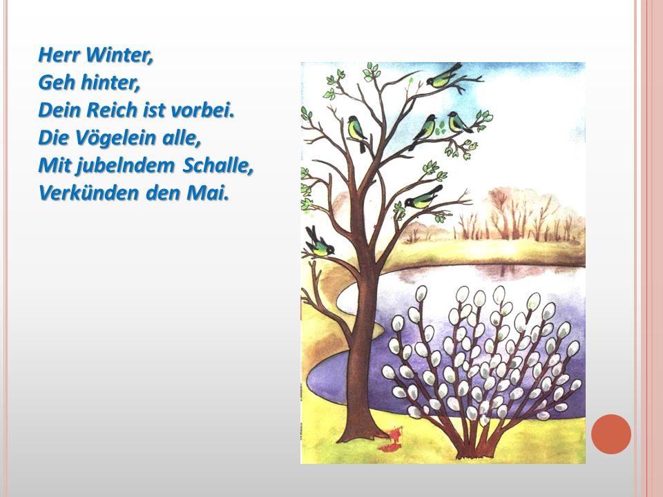 Herr Winter, Geh hinter, Dein Reich ist vorbei. Die Vögelein alle, Mit jubelndem Schalle, Verkünden den Mai.