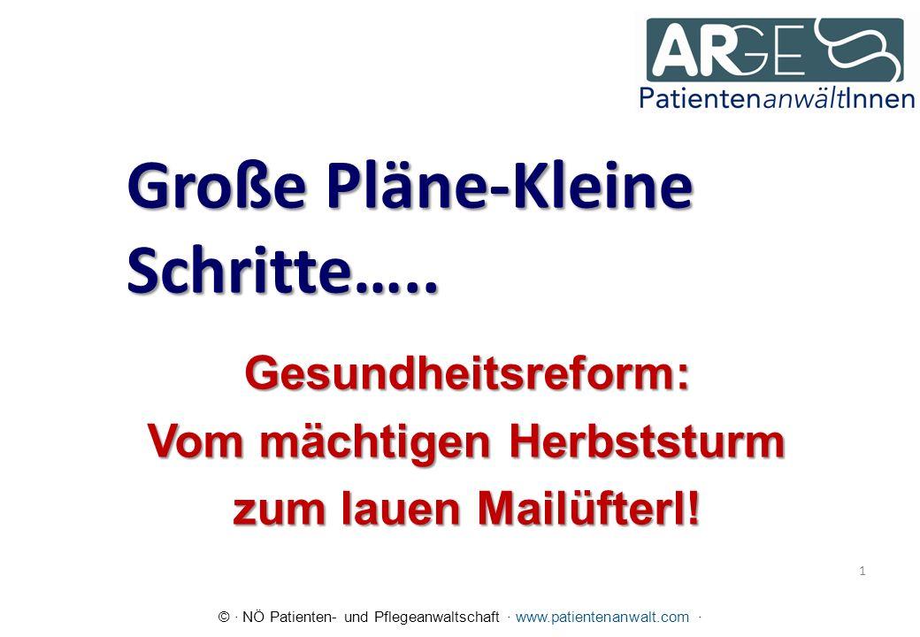 © · NÖ Patienten- und Pflegeanwaltschaft · www.patientenanwalt.com · Große Pläne-Kleine Schritte…..