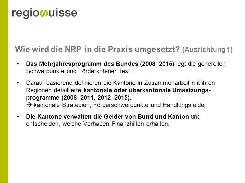 Wie wird die NRP in die Praxis umgesetzt.