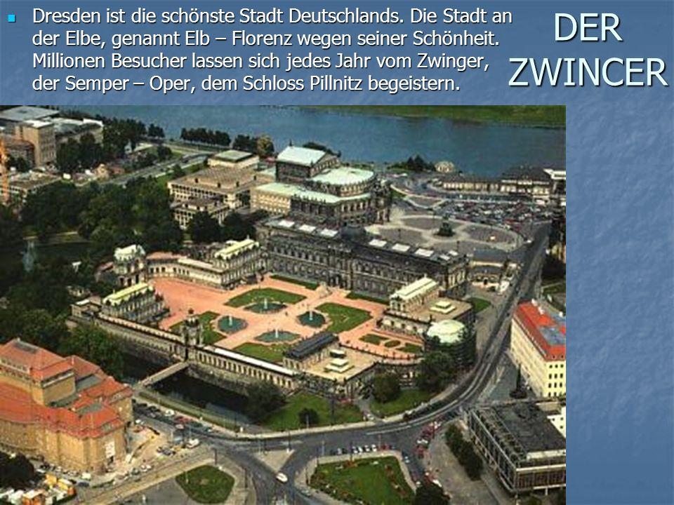 DER ZWINCER Dresden ist die schönste Stadt Deutschlands.