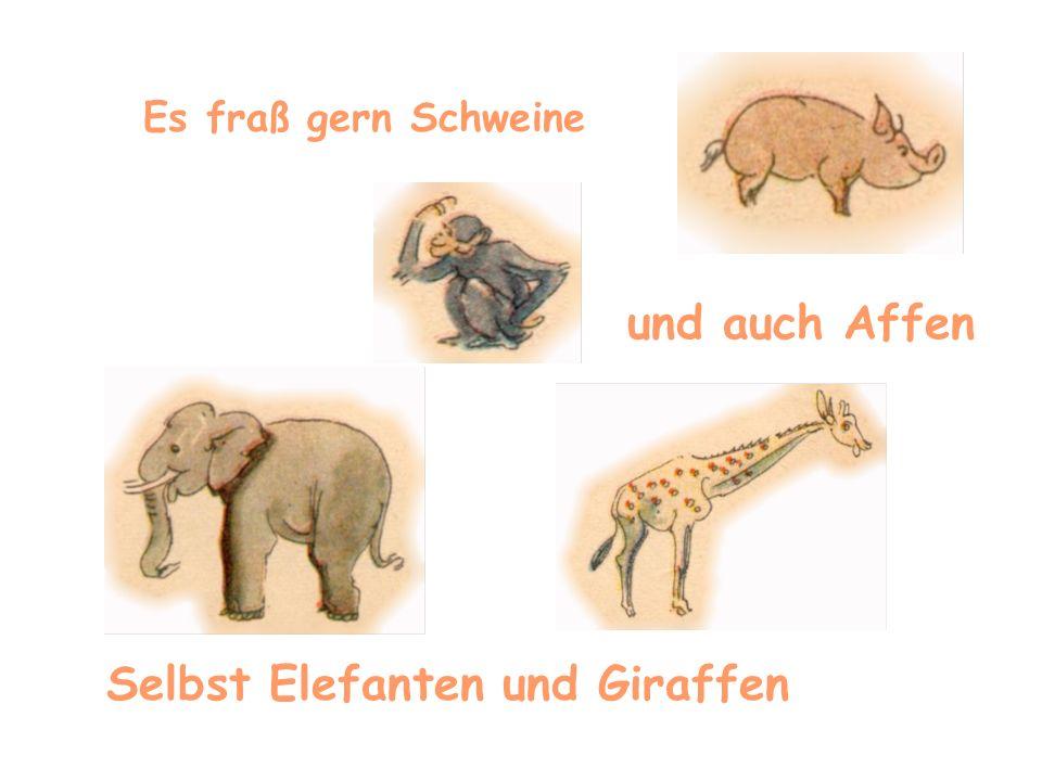 Es fraß gern Schweine und auch Affen Selbst Elefanten und Giraffen