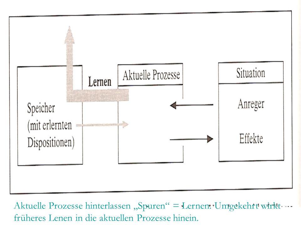 """Aktuelle Prozesse hinterlassen """"Spuren"""" = Lernen. Umgekehrt wirkt früheres Lenen in die aktuellen Prozesse hinein."""