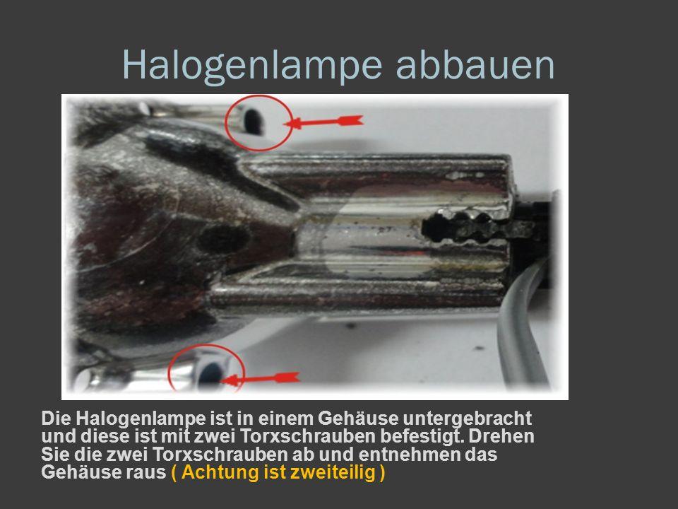 Halogenlampe abbauen Die Halogenlampe ist in einem Gehäuse untergebracht und diese ist mit zwei Torxschrauben befestigt.