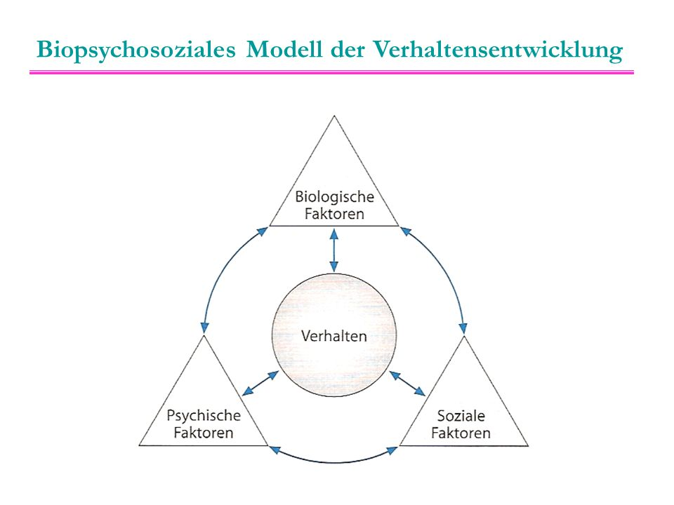 """Der Mensch als biopsychosoziales Gesamtwerk Das biologische, das soziale und das reflektierende, willentlich handelnde Individuum bilden eine """"Dreieinigkeit ."""